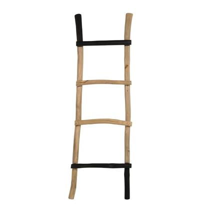 Ladder Harry