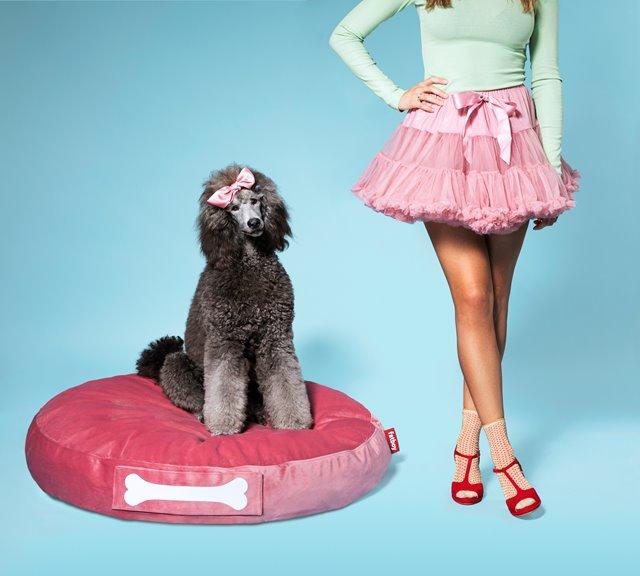 Velvet hondenkussen: voor de echte prinsen & prinsessen